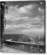 The Marsh-in Black And White Acrylic Print