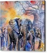 The Masai Mara Elephants Acrylic Print