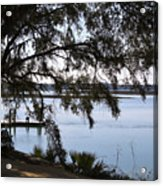 The May River In Bluffton Acrylic Print