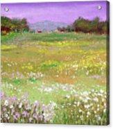The Meadow Acrylic Print