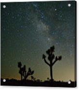 The Milky Way And Joshua Trees Acrylic Print