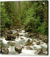 The Miller River  Acrylic Print