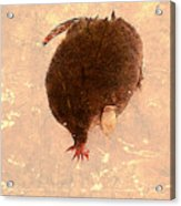 The Mole Acrylic Print