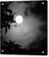 The Moon - La Luna 11 Acrylic Print