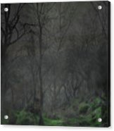 The Moon Over Guisecliff Acrylic Print