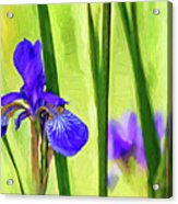 The Mystery Of Spring - Paint Acrylic Print