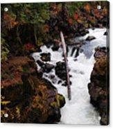 The Natural Bridge Gorge Acrylic Print