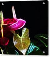 The Neon Garden Acrylic Print