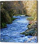 The Nestucca River Acrylic Print