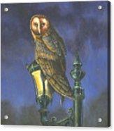 The Night Watch Acrylic Print by Jeff Brimley