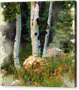 The North Rim Forest Acrylic Print