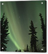 The Northern Lights Acrylic Print by Maria Stenzel