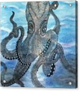 The Octopus 3 Acrylic Print