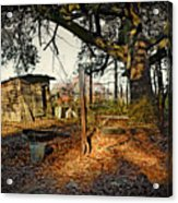 The Old Chicken Lot Acrylic Print