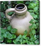 The Old Jug Acrylic Print