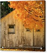 The Old Shack Acrylic Print