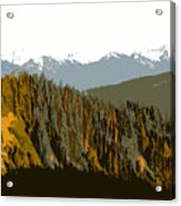 The Olympic Mountains Acrylic Print