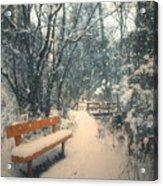 The Orange Bench Acrylic Print