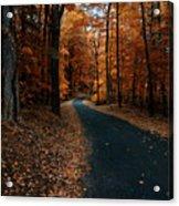 The Orange Road Acrylic Print