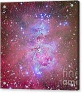 The Orion Nebula Region Acrylic Print