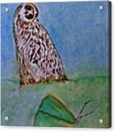 The Owl And The Butterfly Acrylic Print