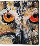 The Owl Of Lakshmi Textured Painting_0476 Acrylic Print