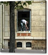 The Painter In The Window Acrylic Print