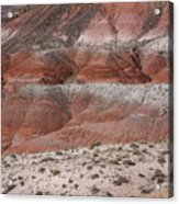 The Painted Desert  8020 Acrylic Print