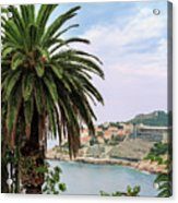 The Palm Is Always Associated With Summer, Sea, Travelling To Warm Countries And Rest Acrylic Print