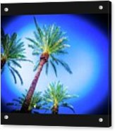 The Palms Of Scottsdale  Acrylic Print
