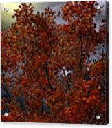 The Passion Of Autumn Acrylic Print