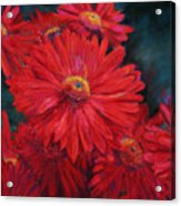 The Passion Of Red Acrylic Print
