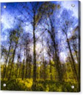 The Pastel Forest Acrylic Print