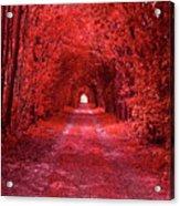 The Path 2 Acrylic Print