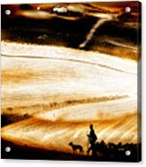The Path Home Acrylic Print