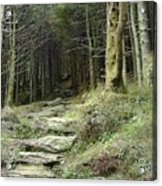 The Path Leading Up To  Acrylic Print