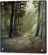 The Path Love Took Acrylic Print