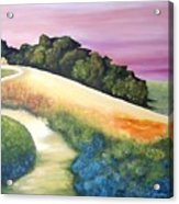 The Path Over The Hill Acrylic Print by Carola Ann-Margret Forsberg