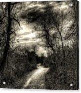 The Path Seldom Taken Acrylic Print