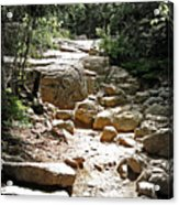 The Path To The Mountain Top Acrylic Print