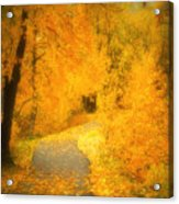 The Pathway Of Fallen Leaves Acrylic Print