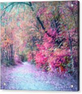 The Pathway Of Gentle Memories Acrylic Print