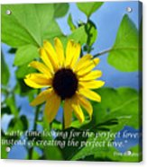 The Perfect Lover  Acrylic Print