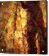 The Photographer In Water Acrylic Print by Joyce Dickens