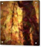 The Photographer Acrylic Print