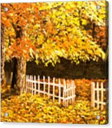 The Picket Fence Acrylic Print