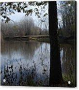 The Pine River Acrylic Print
