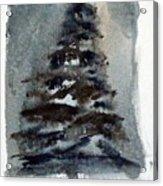 The Pine Tree Acrylic Print