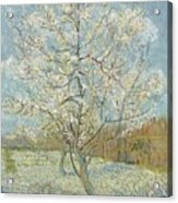 The Pink Peach Tree Arles, April - May 1888 Vincent Van Gogh 1853  1890 Acrylic Print