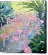 The Pink Pond Of Flamingos Acrylic Print